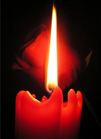 Красная свеча горит на фоне розы