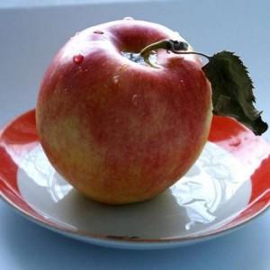 Тайна яблочной присушки