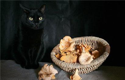 Черная порча на смерть – сильный и опасный обряд