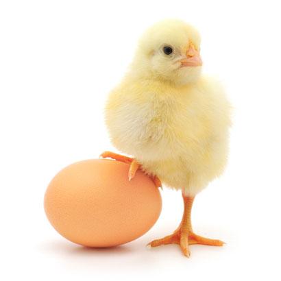 Как снять порчу с помощью яйца?