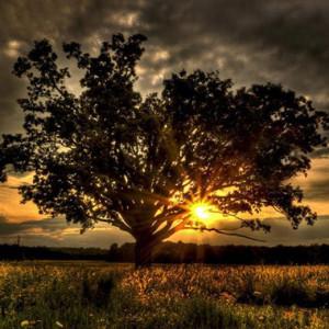 6 способов избавиться от проклятия