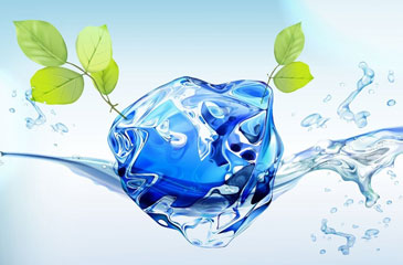 Капля воды и ветки