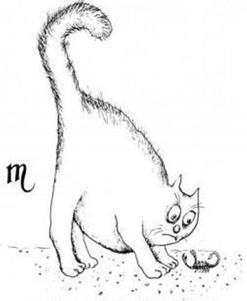 Рисунок кот и скорпион