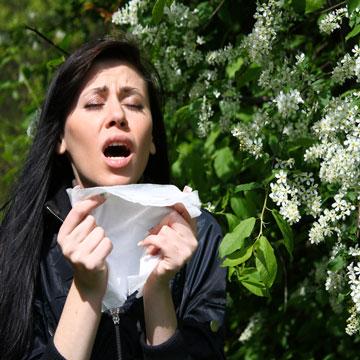 Как навсегда избавиться от аллергии?