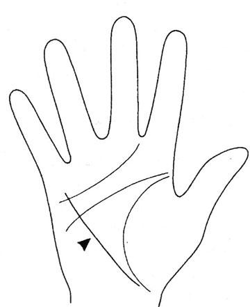 Линия здоровья на провой руке