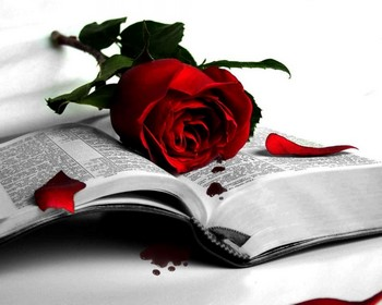 Роза на Библии