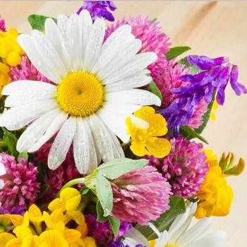 Цветы подскажут тебе будущее