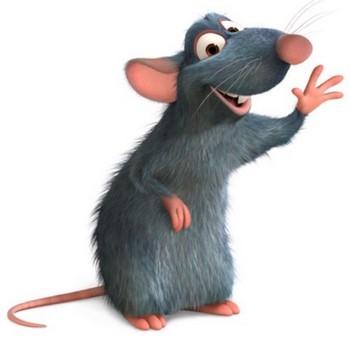 Характеристика мужчин, рожденных в год Крысы