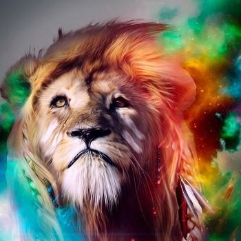 Лев — какой он?