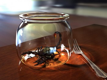 Скорпион в банке