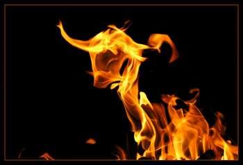 Телец из огня