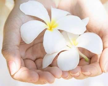 Цветочек в руках