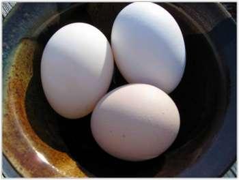 Три куриных яйца
