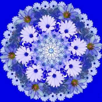 Рисунок цветов по кругу