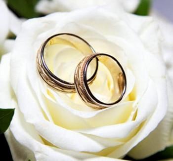 Обручальные кольца на белой розе