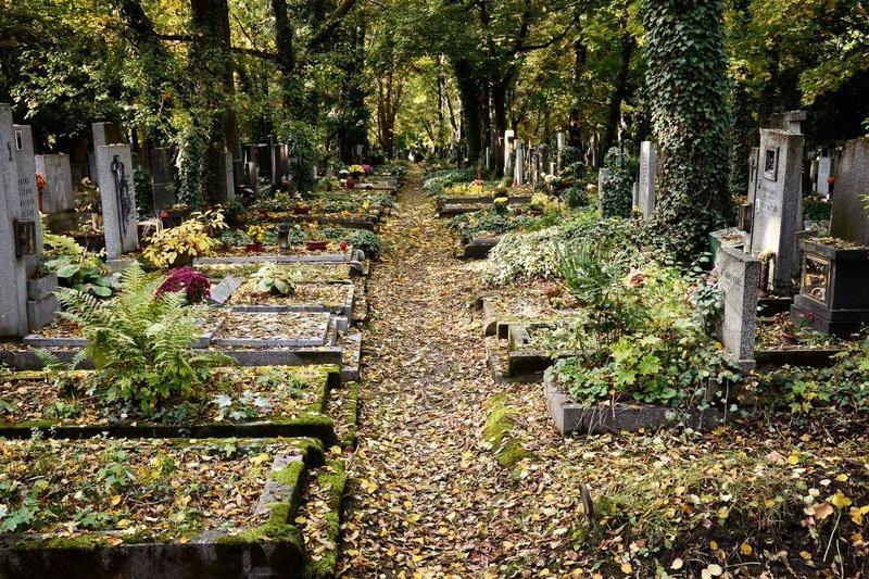 Кладбищенские привороты