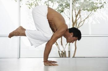 раджа и аштанга йога