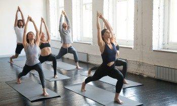 ключевые особенности айенгара йоги