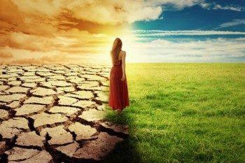пустыня и поле
