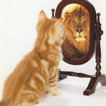Развитие уверенности в себе при помощи медитации