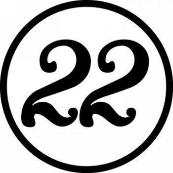 Значение числа 22