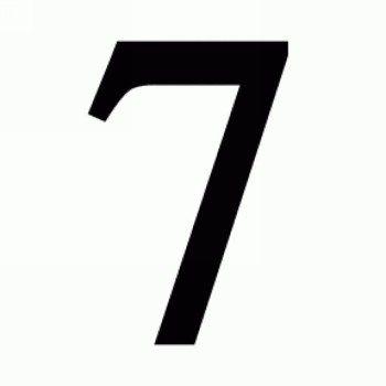 Число судьбы 7
